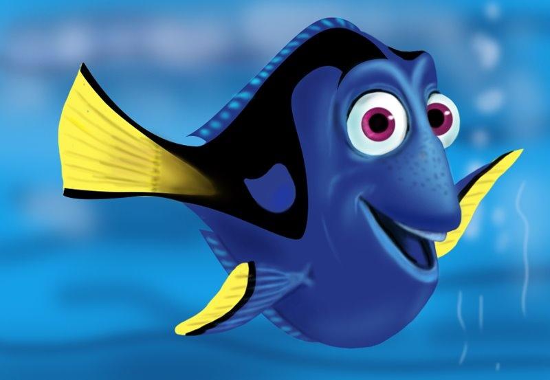 рыбка дори картинки фотографии какой мальчик хотел